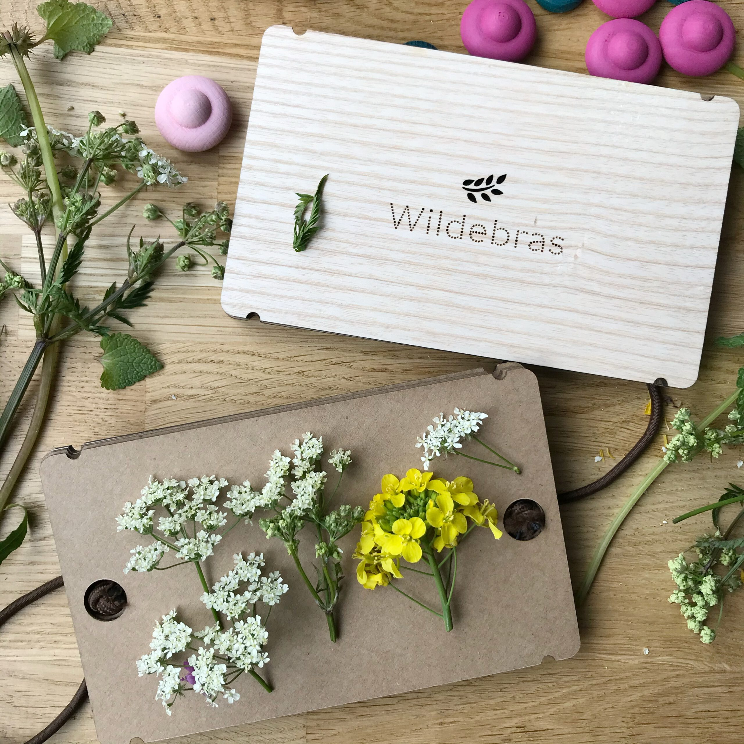 bloemen-drogen-in-een-bloemenpers-doen-met-kinderen