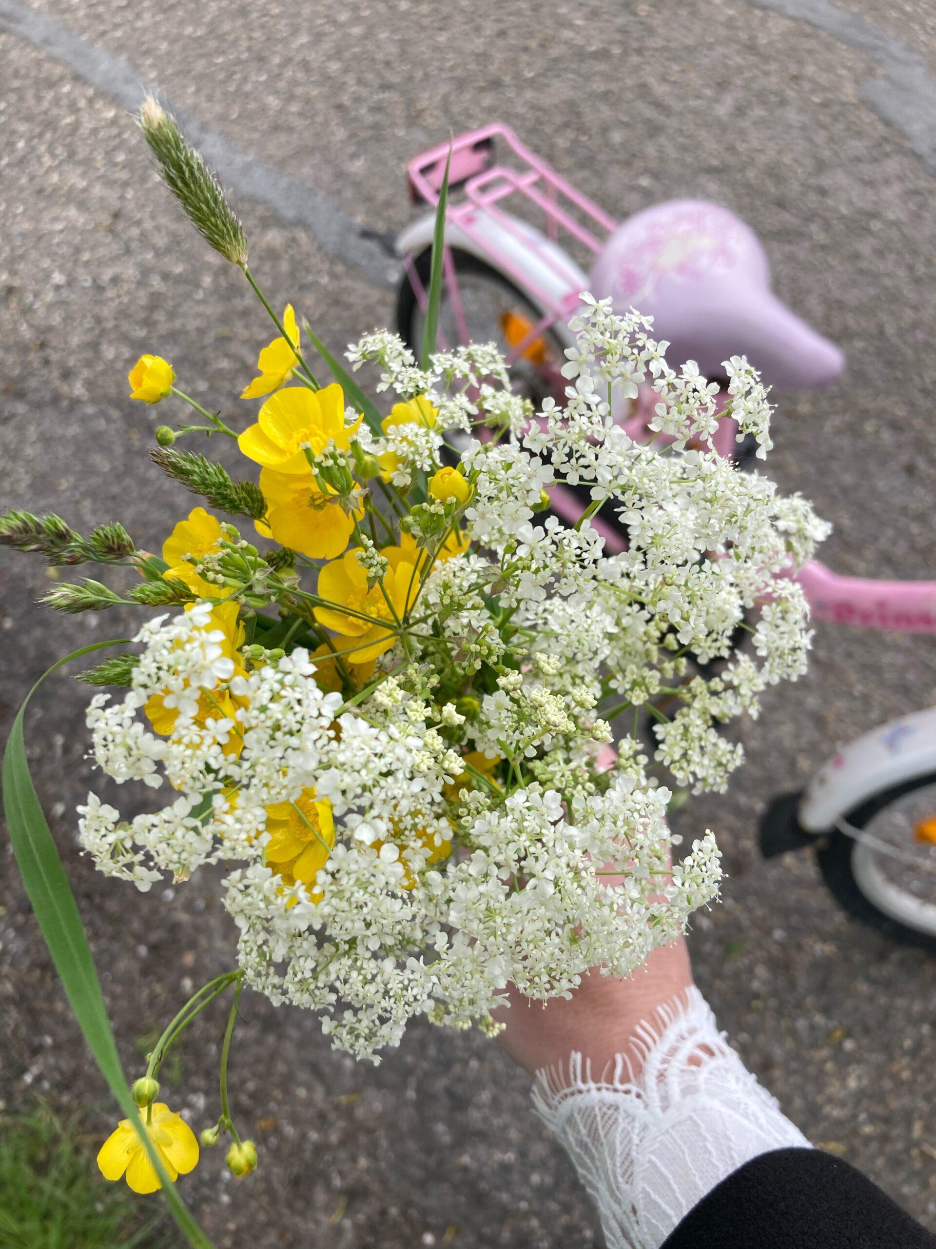 droogbloemen maken in een bloemenpers