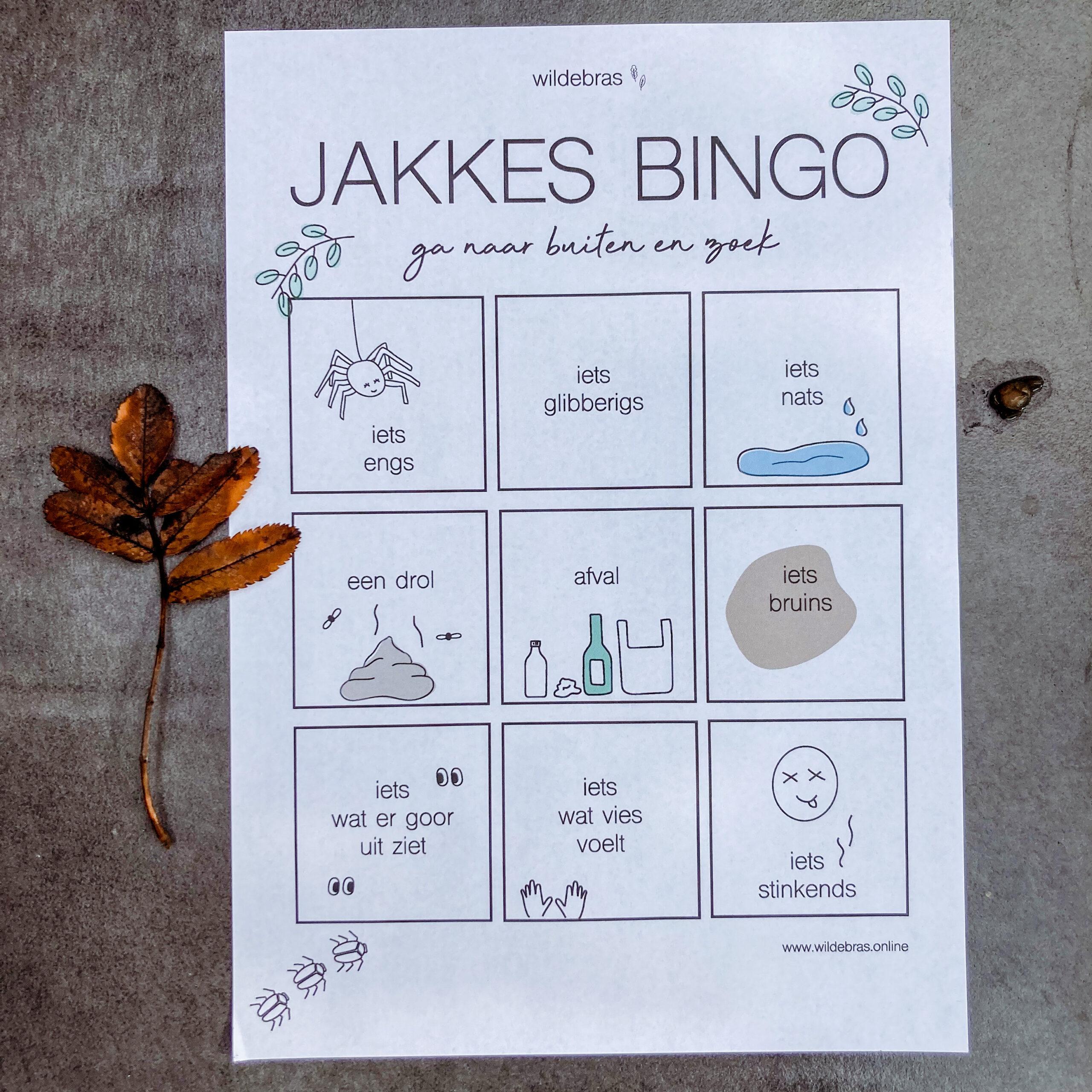 jakkes bingo zalige zoektocht voor kinderen