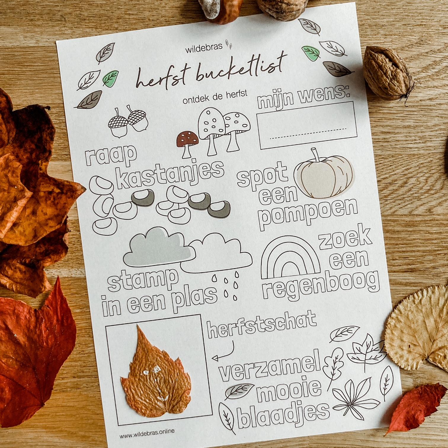 herfst bucketlist printable