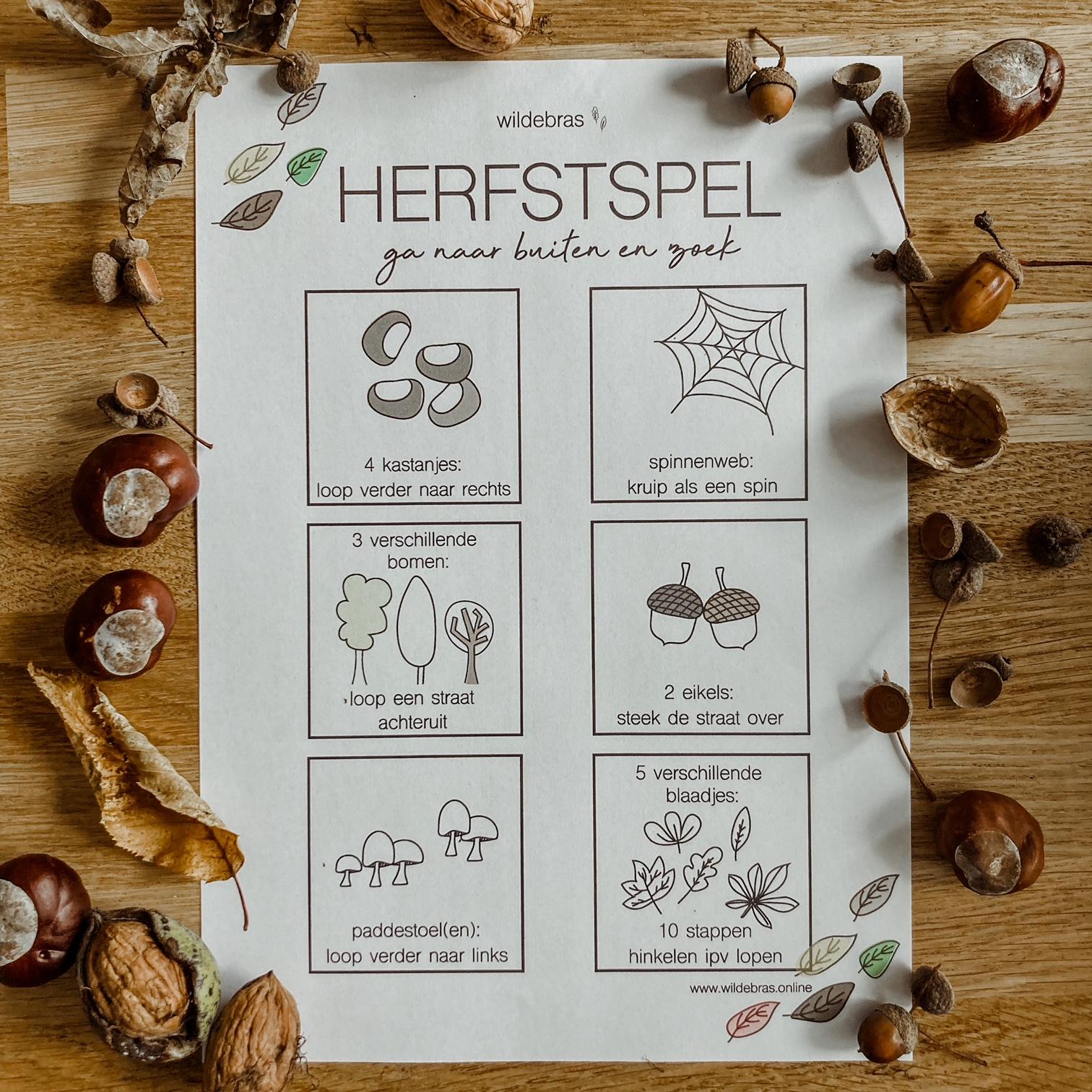 herfst speurtocht gratis printable